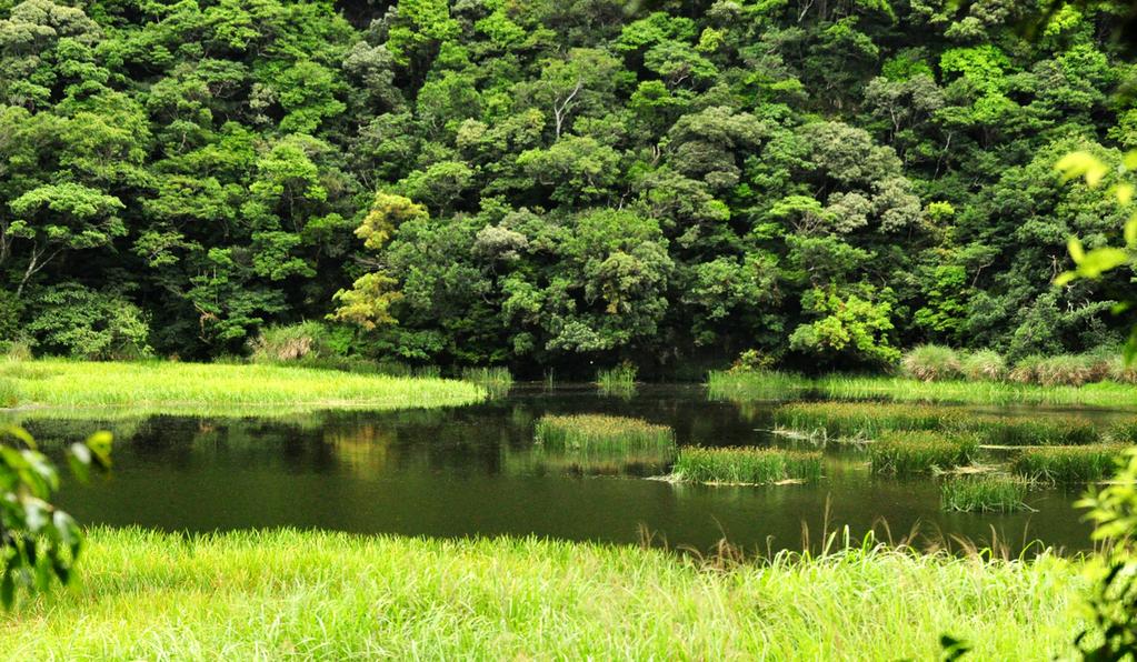 [南澳]神秘52區-神祕湖 @飯糰五號的旅遊狂想+