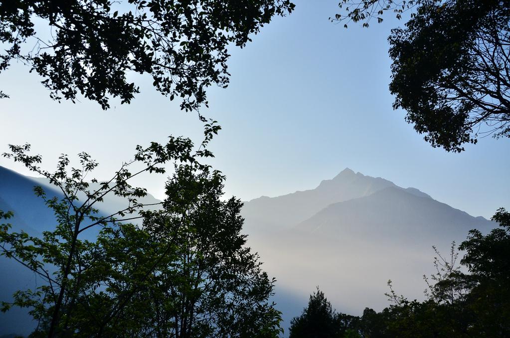 [古茶部安]好茶森林實驗小學,開課嚕 @飯糰五號的旅遊狂想+