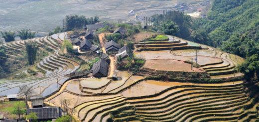 [越南沙壩]世界七大奇美梯田 @飯糰五號的旅遊狂想+