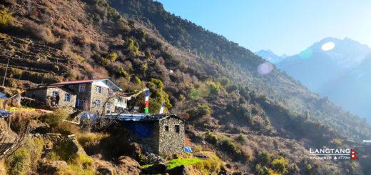 [尼泊爾]藍塘紀行,Day 5 Sherpagon-Briddhim-Lingjing-Syabrubesi 回程,也是下一個起點。 @飯糰五號的旅遊狂想+
