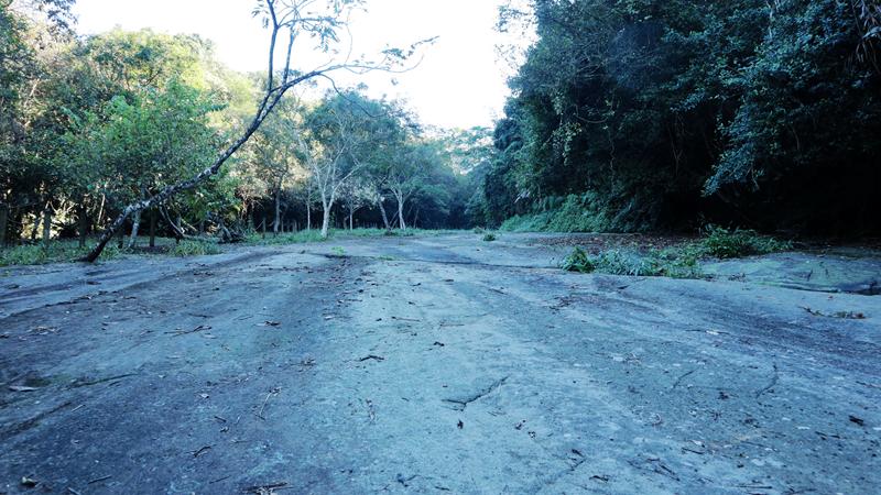 [山海圳D5]達娜伊谷到達邦,那個產業道路是崩潰。